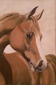 Głowa młodego konia, olej n...