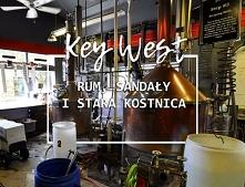 Key West w pół dnia