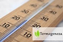 Termogeneza - na czym polega?