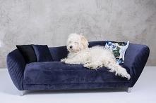 minisofa legowisko dla psa Sofa Vittoria to idealne legowisko dla Twojego pupila, ekskluzywne i niezwykle wygodne. Sofa ta została wykonana z najwyższą starannością i dbałością ...