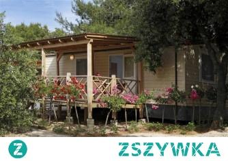 Camping solaris beach resort to miejsce, które umożliwi Ci odkrywanie zakątków malowniczej Dalmacji. Jesteś na etapie planowania wakacji? Zapoznaj się z dokładną ofertą dostępną na stronie i zaplanuj swój wyjazd od A do Z!