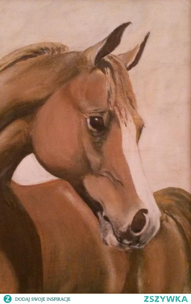 Głowa młodego konia, olej na płótnie, 30cm : 40cm.