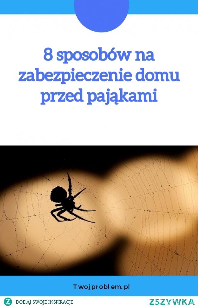 8 sposobów na zabezpieczenie domu przed pająkami