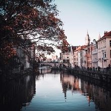 Miasto Gandawa w Belgii. Pu...