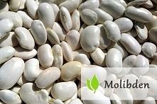 Molibden- czym jest?