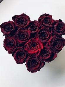 Przepiękne bordowe różyczki...