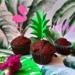 impreza hawajska dekoracje,...