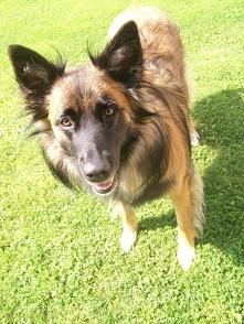 Bunia - kochana psinka
