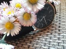 czas kwiatów