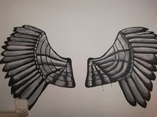 Wings on the wall