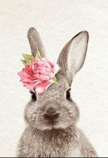 watercolor bunny rabbit flower
