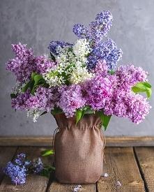 Bukiety ze świeżych kwiatów idealnie wyglądają na stole jako ozdoba a jednocz...