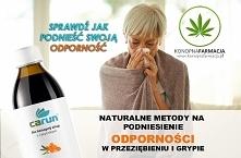 wwwkonopiafarmacjapl Portal...