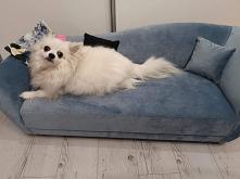 Minisofa legowisko dla psa / kota model Vittoria Velvet light-blue