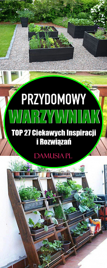 Warzywniak Przydomowy – TOP...