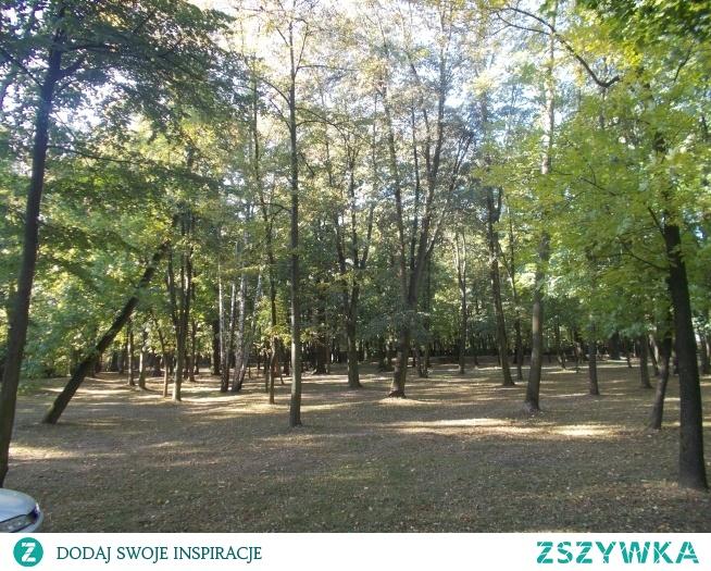 Park przy pałacu w Kłobucku-Zagórzu