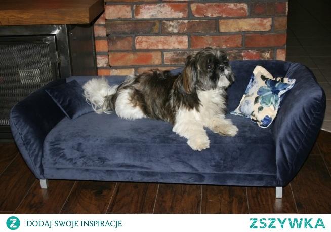 Minisofa Vittoria legowisko dla psa, kota. Elegancka kanapa, sofa dla Twojego Pupila. Przeznaczone dla małych i średnich psów.Vittoria to komfortowe legowisko dla psa – najlepsze materiały, stabilna konstrukcja.