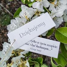 Karteczki z cytatami o miło...