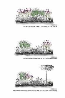 9 roślin strukturalnych