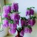 Drzewko z koralików zdjęcie z fb