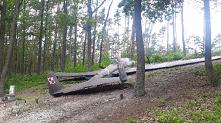 Łoś -samolot wojska polskie...