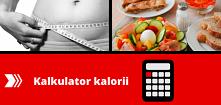 Kalkulator kalorii – jak je...