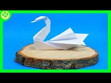 Jak zrobić Łabędzia Origami...