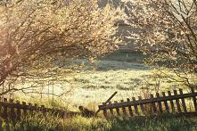 podlaska wiosna