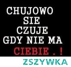 mojecytatki .pl/14210-chujowo_sie_czuje.html    #love #polishgirl #polishboy #polish #miłość #cytaty #cytatyomiłości #naiwna #ufam #kocham #zycie #zazdrosc #tesknota #potrzeba #ufam #kocham #ciebie #chujowo