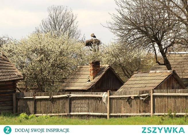 wiosna na Podlasiu