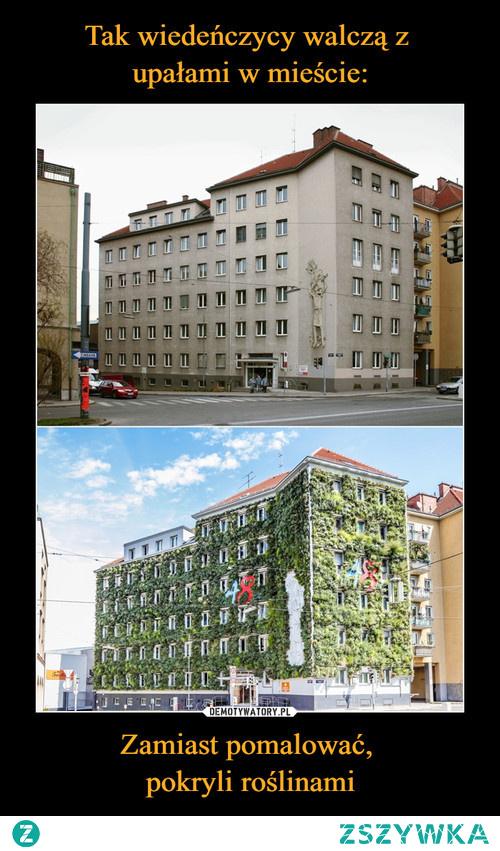#Wieden #streetart