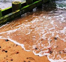 #wakacje #morze #zdjeciaast...
