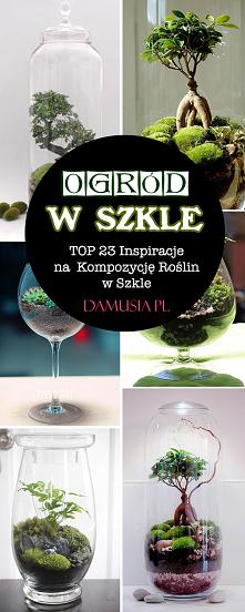 Ogród w Szkle – TOP 23 Insp...