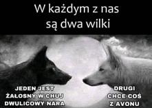 #disjsj #dksjsn