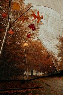 #rain #cold #autumn