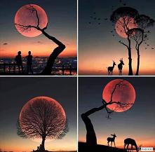 księżc #księżyc #moon