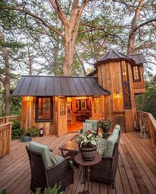 #dom #drzewo