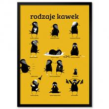 Plakat Kawka