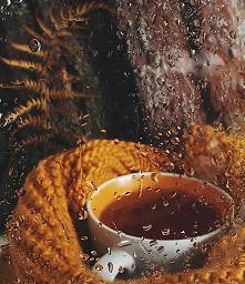 #deszczowa #jesień