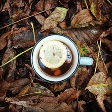 Herbata z imbirem cytryną i...