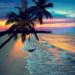 #srilanka #wakacje
