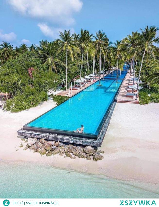 #pool #maledives