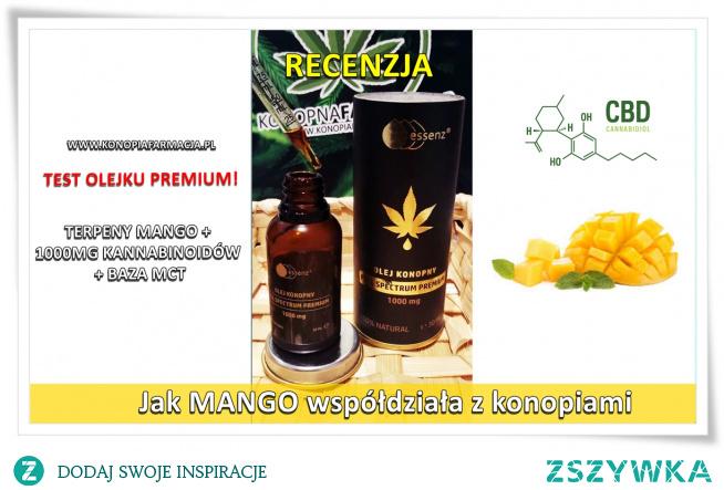 Jak wiecie, nasze produkty nie tylko sprawdzamy pod kątem testów laboratoryjnych, ale również osobiście sprawdzamy jakość każdego produktu. Wiele waszych pytań dotyczy smaku i zapachu ekstraktów, metody podaży i dawkowania, a także czasu, w jakim kannabinoidy dostają się do receptorów w układzie endokannabinoidowym.   Jakiś czas temu do naszego punktu konopnego trafił nowy olejek konopny full spectrum w wersji #premium.Skład produktu obejmuje:  organiczny olej konopny, olej MCT (zawartość fitozwiązków min.1000 mg) w tym terpeny odpowiadające naturalnym terpenom zawartym również w owocach mango.   RECENZJA PRODUKTU:    Warto zacząć od opakowania. Ciemne pudełko pozwala na przechowywanie olejku w dowolnym miejscu bez narażenia go na promienie słoneczne, dzięki czemu produkt dłużej zachowa swoje walory. Bardzo pozytywnie zaskoczyła nas szklana pipetka z miarką. Dzięki nowej wersji dozownika jesteśmy w stanie idealnie odmierzyć dawkę, a także bezproblemowo wykorzystać olejek do samego końca.    Olejek posiada intensywny, przyjemny zapach. Jest to połączenie terpenów mango, z zapachem surowego ekstraktu cbd i nutą lekko cytrusowych terpenów.    Ponieważ baza olejku to olej konopny z olejkiem MCT, jest on nieco jaśniejszy niż np. bestsellerowy olejek CBD w wersji RAW.Wybrana przez nas dawka to ok. 0,25 ml produktu ( jest to kwestia indywidualna) na porcję przypada ok 10 kropli.  W smaku ekstrakt jest przyjemny, typowe zielone nuty zostały złagodzone olejkiem kokosowym i terpenami mango. Jest to kolejny plus, ponieważ nie każdej osobie odpowiada smak surowego ekstraktu.    Czas, w jakim kannabinoidy docierały do receptorów ( test na migrenie i stanie zapalnym ) to ok. 30 min. w przypadku migreny oraz ok. 40 min w przypadku stanu zapalnego.    Olejek był testowany w godzinach od ok. 9:00 do ok. 18:00. Dzięki temu wiemy, że ekstrakt nie powodował senności w ciągu dnia, co jest domeną dla pełnych ekstraktów o stężeniach ok. 10 % oraz dawek wyższych niż 0,25 ml  Jest to bardzo