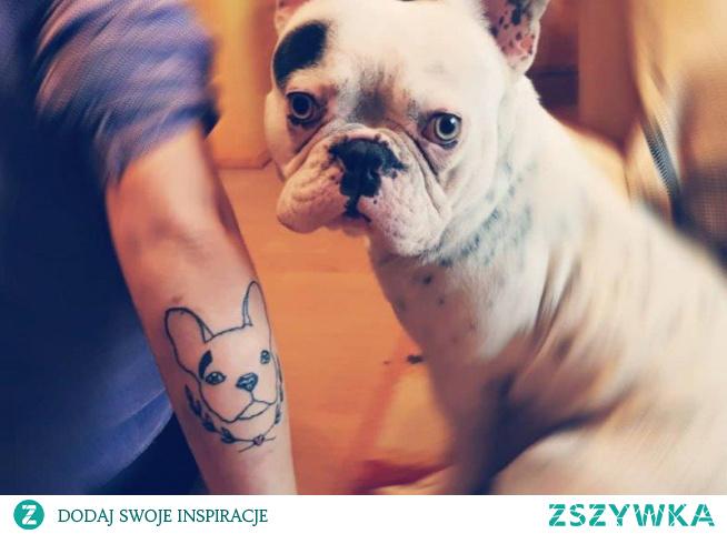 Buldog francuski tatuaż