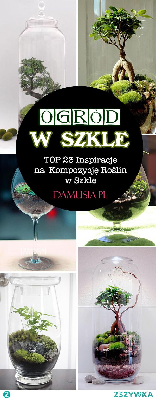 Ogród w Szkle – TOP 23 Inspiracje na Kompozycję Roślin w Szkle