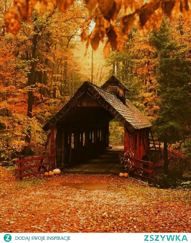 #jesiennie #fall