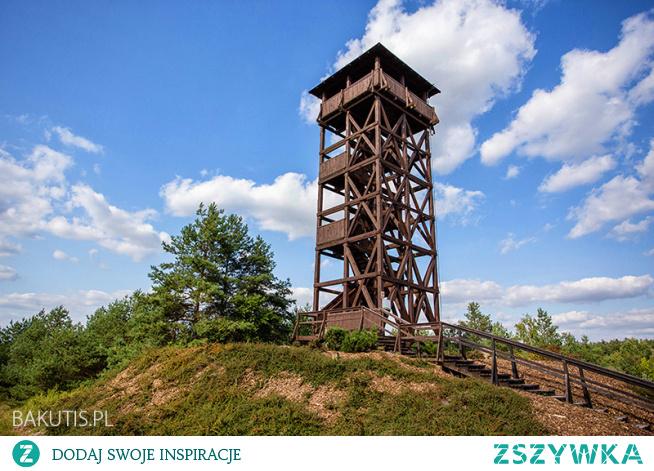Wieża widokowa w Mosinie położona jest na obrzeżach Wielkopolskiego Parku Narodowego. Z samej górę widać panoramę Mosiny oraz przy dobrej widoczności panoramę Poznania. Warto wziąć pod uwagę to miejsce w czasie wypraw po Wielkopolsce, zwłaszcza tych rowerowych i fotograficznych.