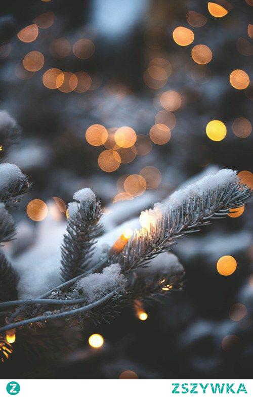 Do świąt zostało 98 dni! Pogoda lubi nam dokuczać, raz upał a raz chłodno. Umiecie przyzwyczaić się do takiej pogody? Tęsknicie za jesienią?  #chcejuzswieta #bożenarodzenie #święta