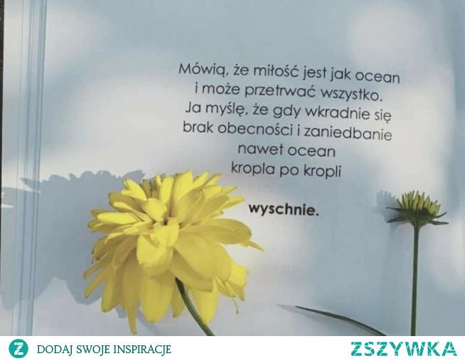 #cytat#true