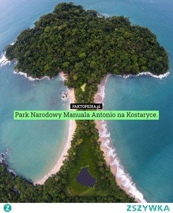 #manualaantonio #parknarodowykostaryka #kostaryka